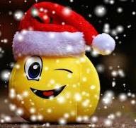 Vacances de Noël - Le programme